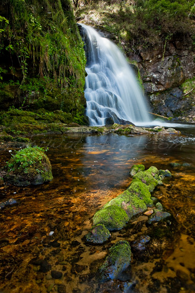 <strong>Title: </strong>Tourmakeady Waterfall<br /><strong>Filename:</strong>Tourmakeady Waterfall_030509_335<br /><strong>Image Reference Number: </strong>swl031
